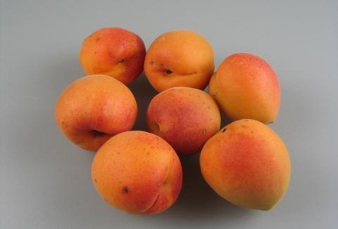 ovoce-04-merunky-velkopavlovicka.jpg