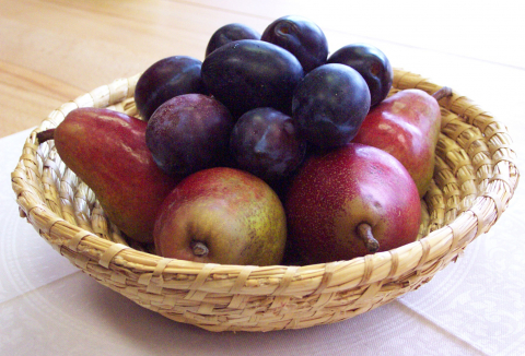 ovoce-13-talir.jpg